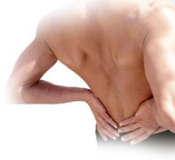 pain in the low back